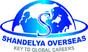Shandelya Overseas
