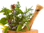 Herbal Therapy Centre Prolapse Rectum