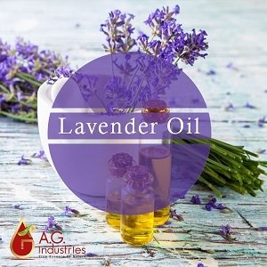 Lavender Oil Suppliers in India