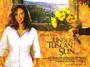 Under the Tuscan Sun (British Quad) Movie PosterSKU: ge-21645