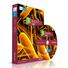 ICSE CLASS 9 BIOLOGY(1DVD PACK)